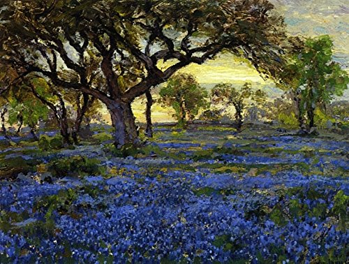 The Museum Outlet - Old Live Oak Tree and Bluebonnets on the West Texas Military Grounds, San Antonio, 1919-20, Stretched Canvas Gallery Wrapped. - Antonio San Texas Outlets