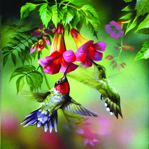 Summer Hummer 1000 Jigsaw Puzzle product image