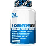 Evlution Nutrition L-Carnitine500, 500 mg of Pure L Carnitine in Each Serving, Stimulant-Free, Capsules (120 Servings)