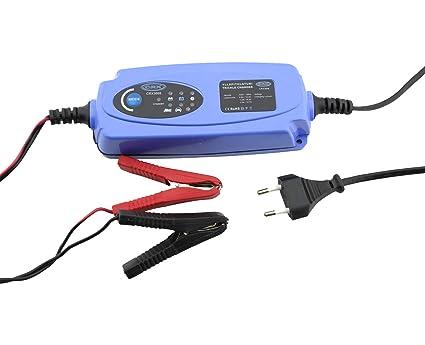 Auto batería Cargador de batería 12 V maX. 120 Ah Cargador ...
