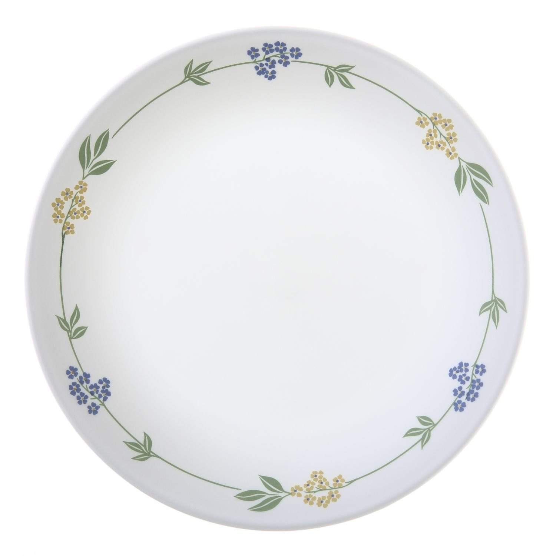 Amazon.com | Corelle Livingware Secret Garden 8-1/2  Luncheon Plate (Set of 8) Luncheon Plates  sc 1 st  Amazon.com & Amazon.com | Corelle Livingware Secret Garden 8-1/2