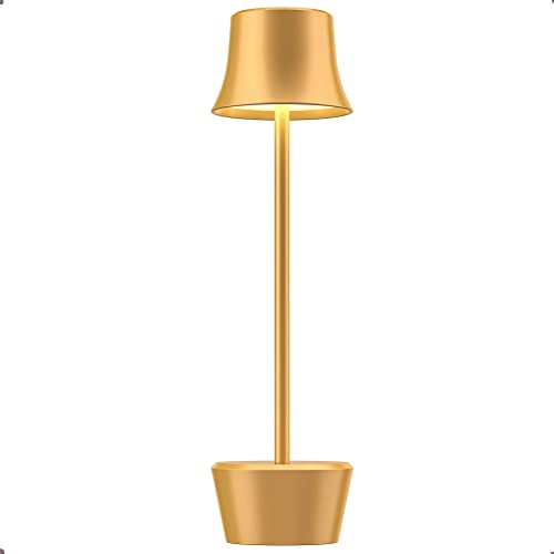 Rechargeable Cordless LED Table Lamp Portable Metal 6000mAh Battery Desk Lamp 2-Levels Brightness USB Night Light