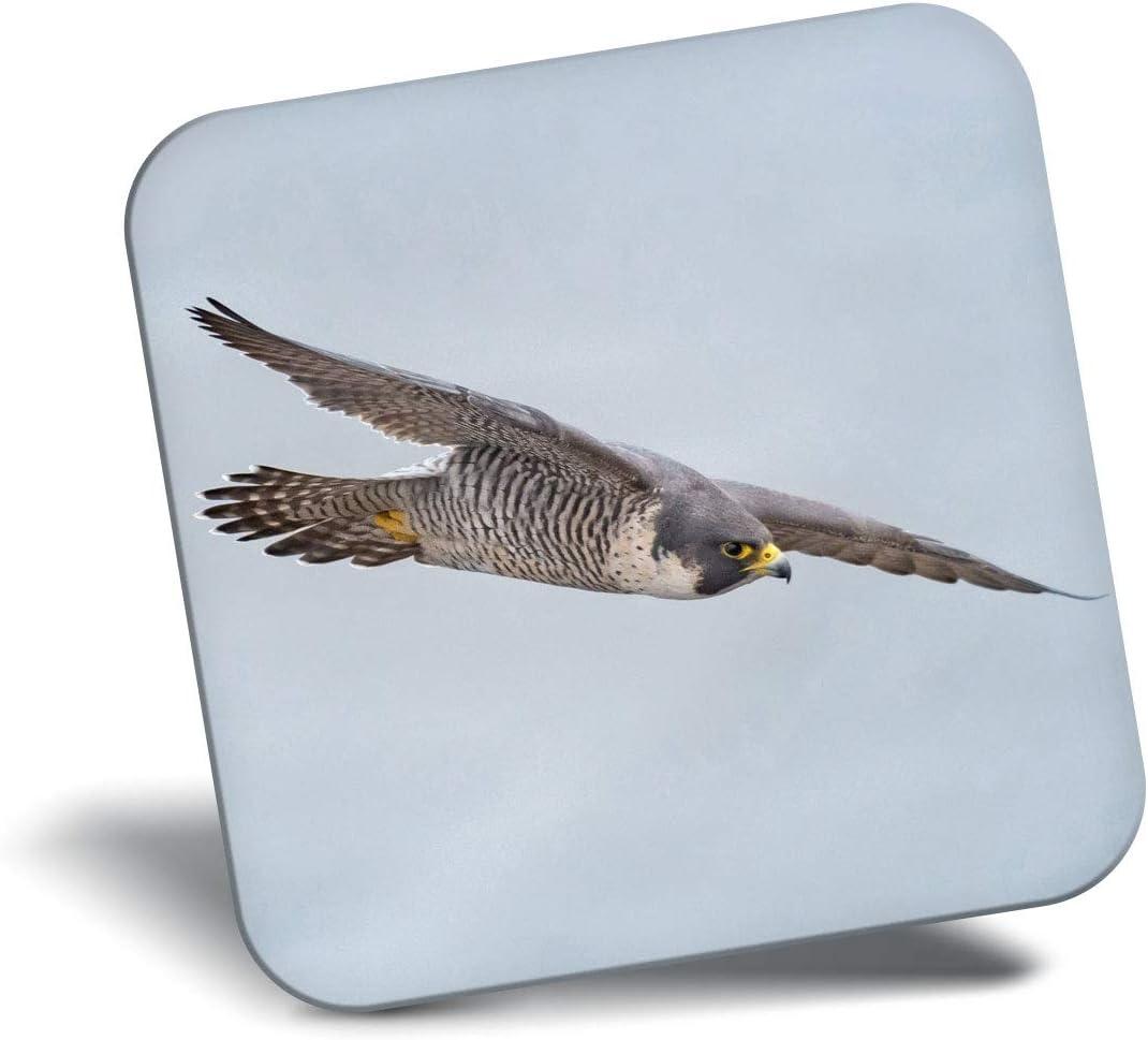 Destination Vinyl ltd Awesome Fridge Magnet - Peregrine Falcon New Jersey 3564