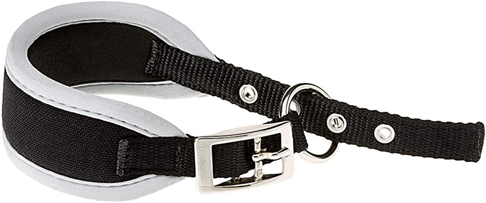 Ferplast Ergocomfort Collare in nylon imbottito per whippet