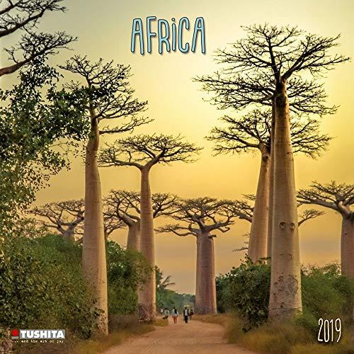 - Africa 2019 Wall Calendar