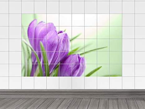 Piastrelle adesivo piastrelle immagine primavera sentimenti croco
