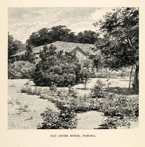 1902 Wood Engraving Adobe House Pomona California Landscape Garden Scenery Trees - Original In-Text Wood Engraving (Pomonas Garden)