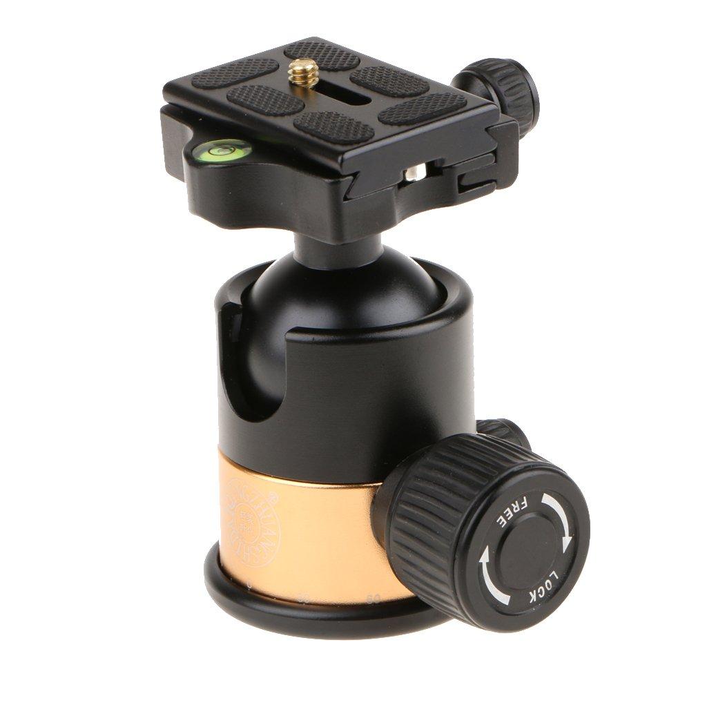 Fill light ZHAOSHUNLI Portable LED Beauty Live Light Makeup Lamp Photography Ring Light Soft Light