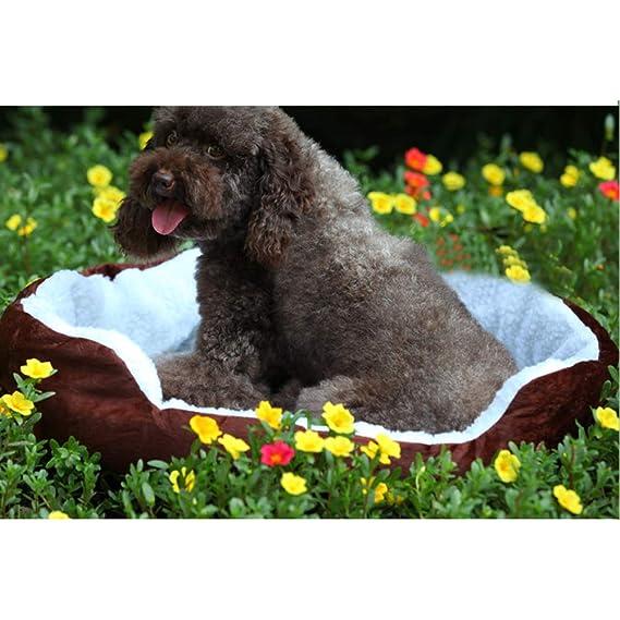 SELUXU Impermeable Super cálido Suave vellón Cachorro Mascotas Perro Gato Cama casa Cesta Nido Mat: Amazon.es: Productos para mascotas