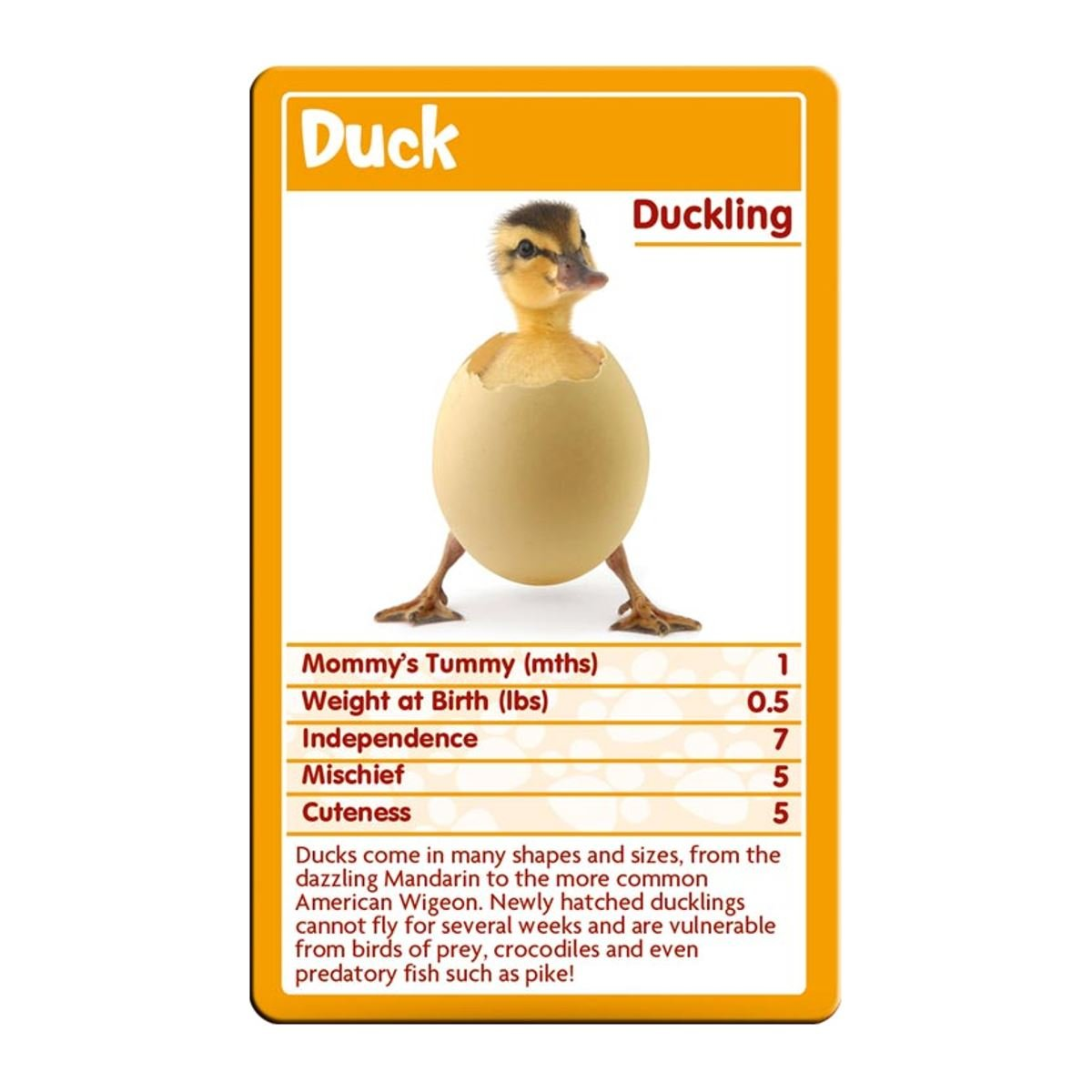 Awesome Animals Top Trumps Card Game