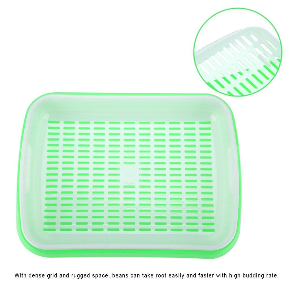 Fdit durable hydroponie semis Plateau plaque Sprout Plastique Pots de chambre denfant Panier pour Beans Peas Mung en Bureau /à domicile
