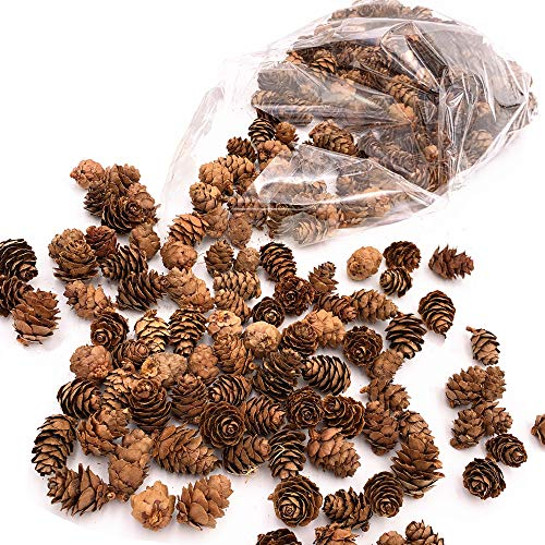 Floral Fantacy Spruce Pine Cones Vase Fillers, Table Scatter, Crafts 8-Ounce (Brown Pine Cones) (Natural)]()