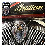 MotorDog69 Indian Horn Cover Coin Mount Set with Don't Tread On Me for Chieftain, Chief Classic, Chief Vintage, Dark Horse, Roadmaster, Scout
