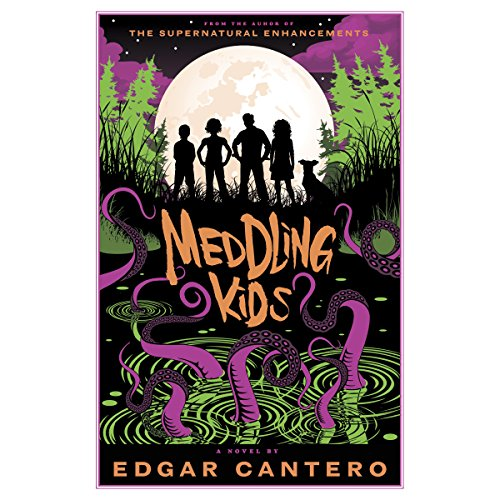Meddling Kids: A Novel by Random House Audio