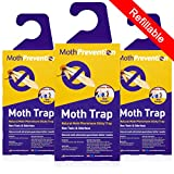 MOTH TRAPS FOR CLOTHES MOTHS - 3-Pack from Moth Prevention - Best Catch-Rate for Clothes Moth and Carpet Moth Traps on the Market!