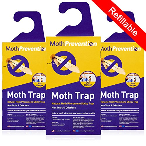 MOTH TRAPS FOR CLOTHES MOTHS - 3-Pack from MothPrevention - Best Catch-Rate for Clothes Moth and Carpet Moth Traps on the Market!
