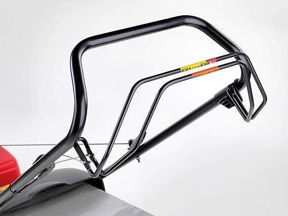 Unbekannt Desconocido cortacésped de Gasolina Honda IZY HRG 466 ...