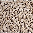 MALTBYS' STORES 10KG SUNFLOWER HEARTS FOR WILD BIRDS BY THE UK'S TRUSTED BRAND SINCE 1904