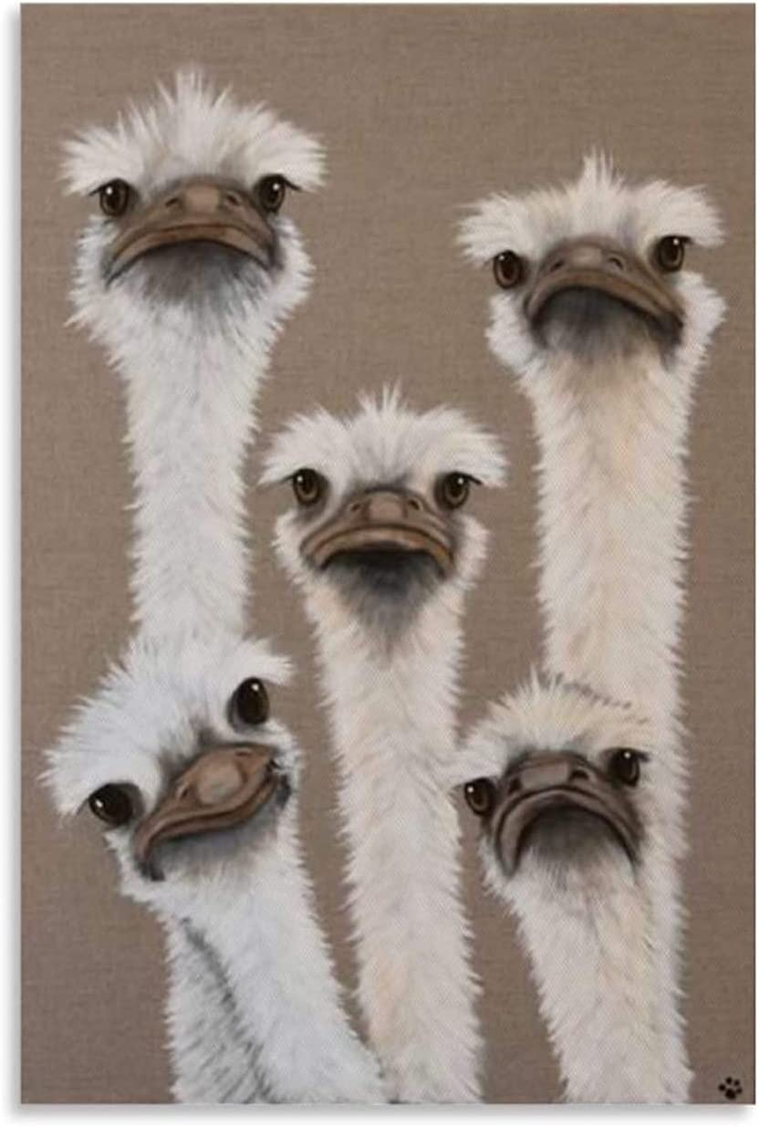 Animal Poster Art Painting Five Ostrich Heads Canvas Art Poster and Wall Art Picture Print Modern Family Bedroom Decor Posters (Unframed,12x18 inch)