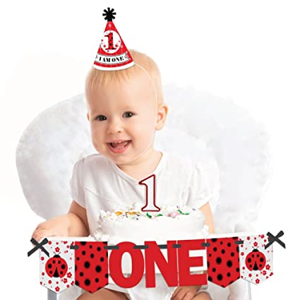 Amazon Big Dot Of Happiness Modern Ladybug 1st Birthday