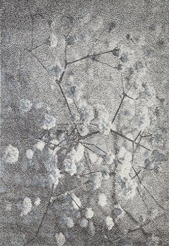 5x7 Floral Designs - Milano Modern Contemporary Vintage Floral Design Jute Backed Area Rugs Dining Living Bedroom High Soft and Fluffy Indoor Floor Rug, Silver Grey Blue, 5' x 7'
