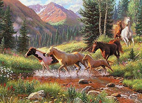 Horse Stream