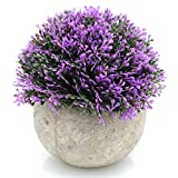 Velener Mini Plastic Artificial Pine Ball Topiary Plant with Pots for Home Decor (Purple)