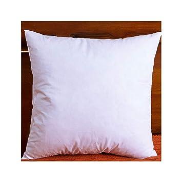 Amazon.com: DOWNIGHT - Juego de 2 almohadas de plumón y ...