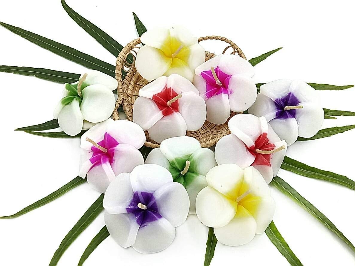 NAVA CHIANGMAI Plumeria Flower Floating Candles 10 pieces / 1 Set by NAVA CHIANGMAI (Image #7)