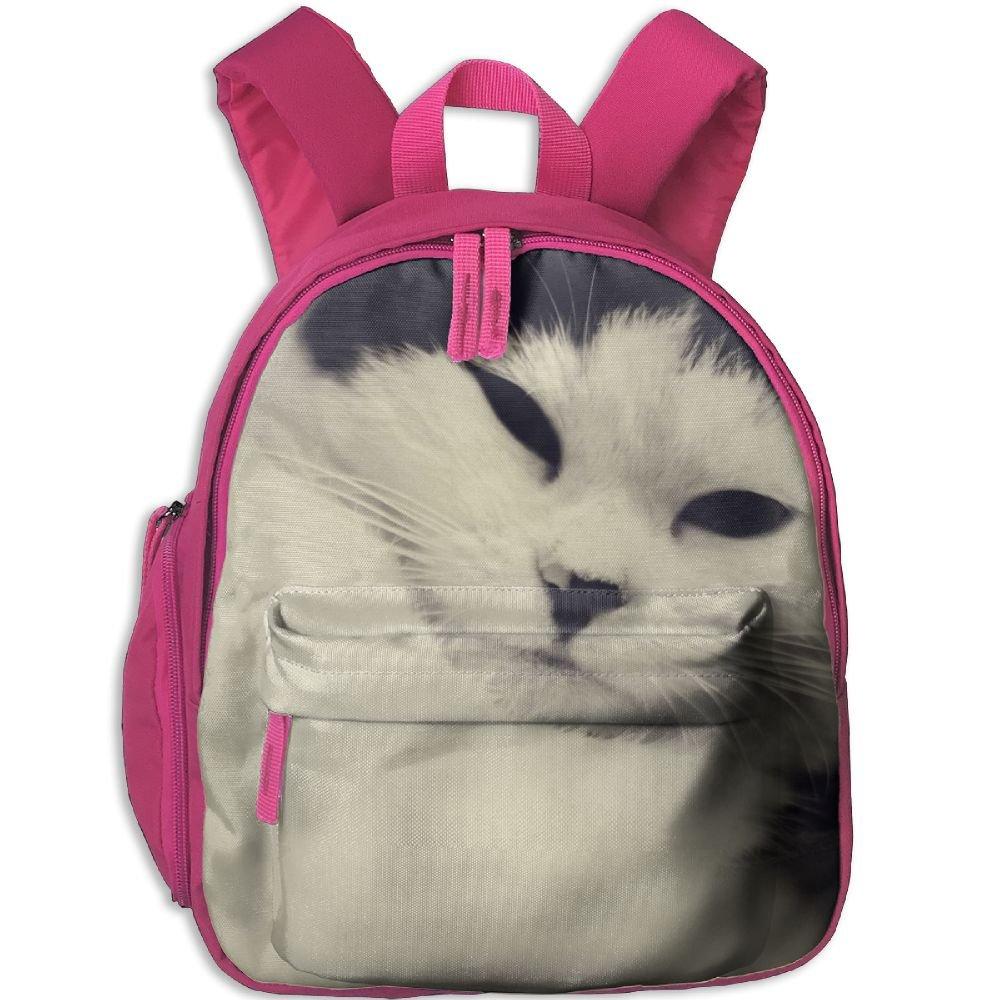 sunmoonet学校バックパック, Cute Funny CatホワイトブラックPreスクールバックパックforボーイズGirls One Size ピンク cya29ae-32411044-Pink-29 One Size ピンク B07BXB5CL1