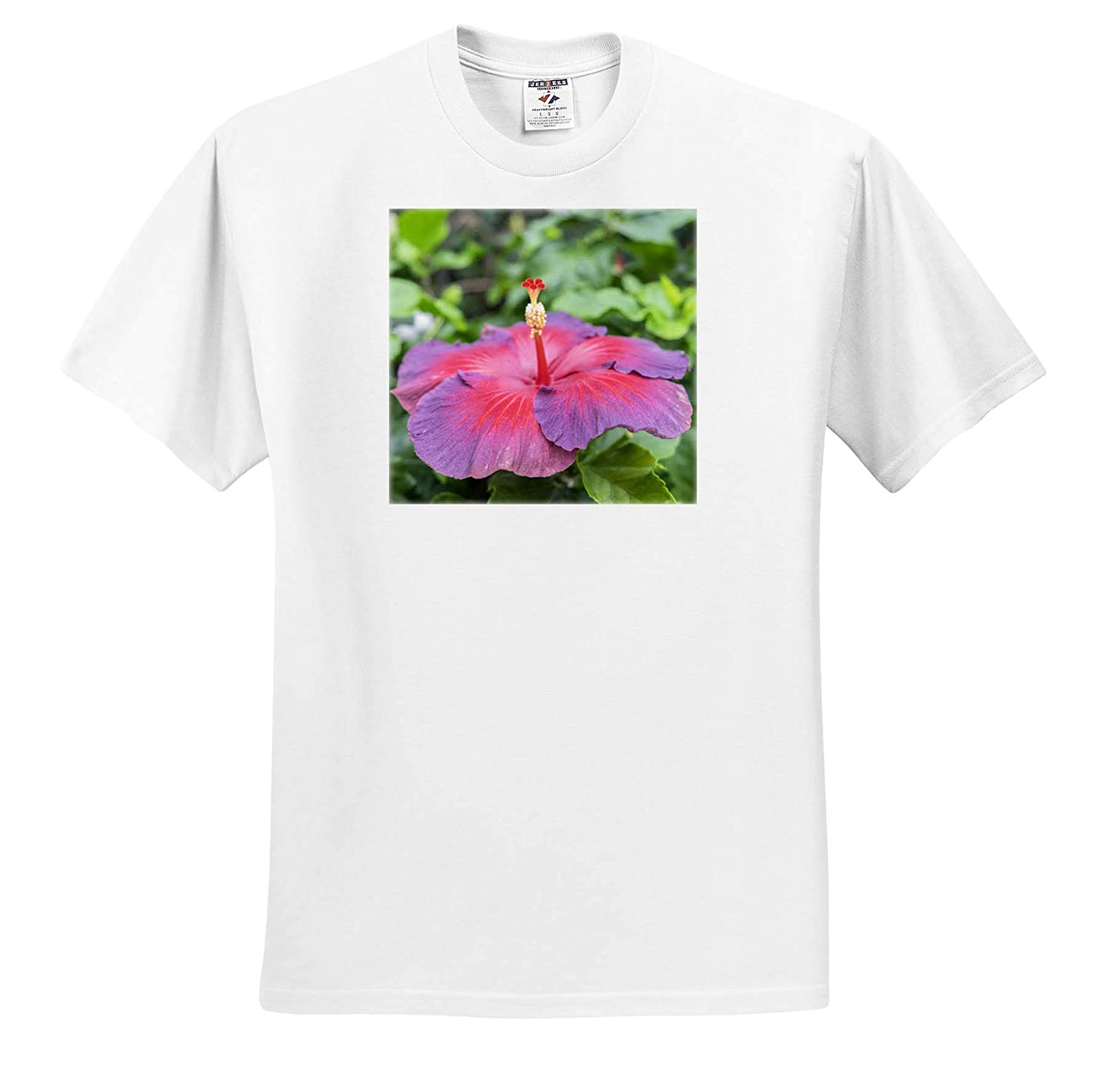 3dRose Danita Delimont Night Fire ts/_313912 Adult T-Shirt XL Hibiscus Flowers