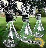 Decorative Hanging Solar Bulb Garden Lights - Pack of 3 - by Solara