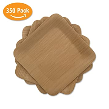 Bamboo Mini Appetizer Plates Disposable | 350 Pack of 3.5u201d Square | Compostable u0026 Biodegradable  sc 1 st  Amazon.com & Amazon.com: Bamboo Mini Appetizer Plates Disposable | 350 Pack of ...