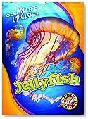 Jellyfish (Ocean Life Up Close)