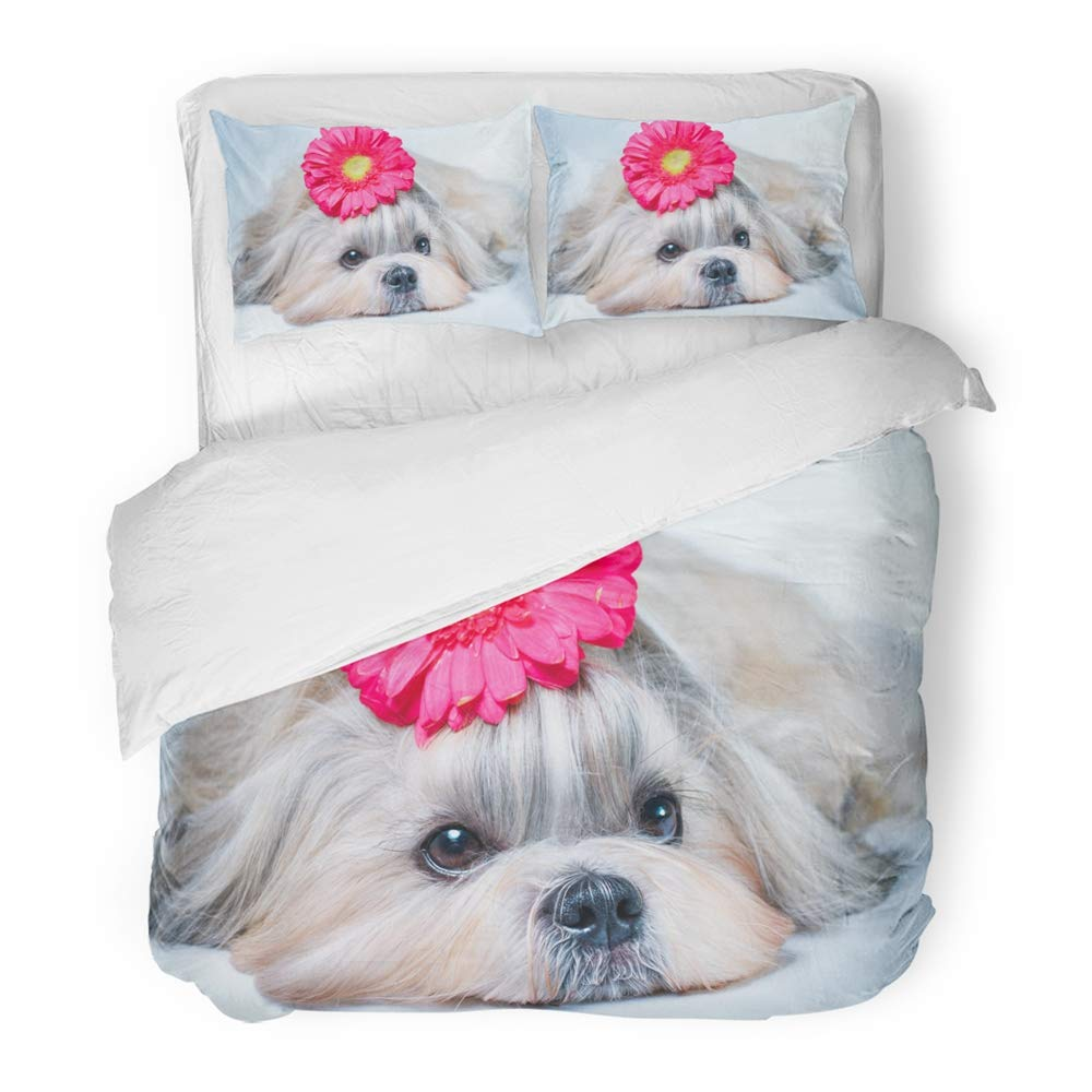 Emvency Bedding Duvet Cover Set Queen (1 Duvet Cover + 2 Pillowcase) Blue Animal Shih Tzu Dog Lying with Flower Relaxing and Spa Red Beautiful Beauty Hotel Quality Wrinkle and Stain Resistant