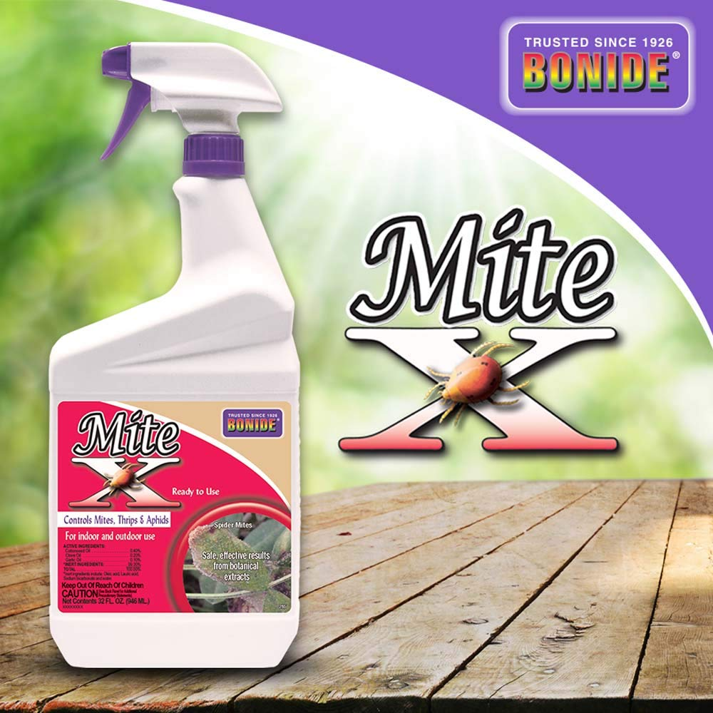 Bonide (BND285) - Mite-X, Ready to Use Indoor/Outdoor Bug Insecticide and  Pesticide (32 oz )