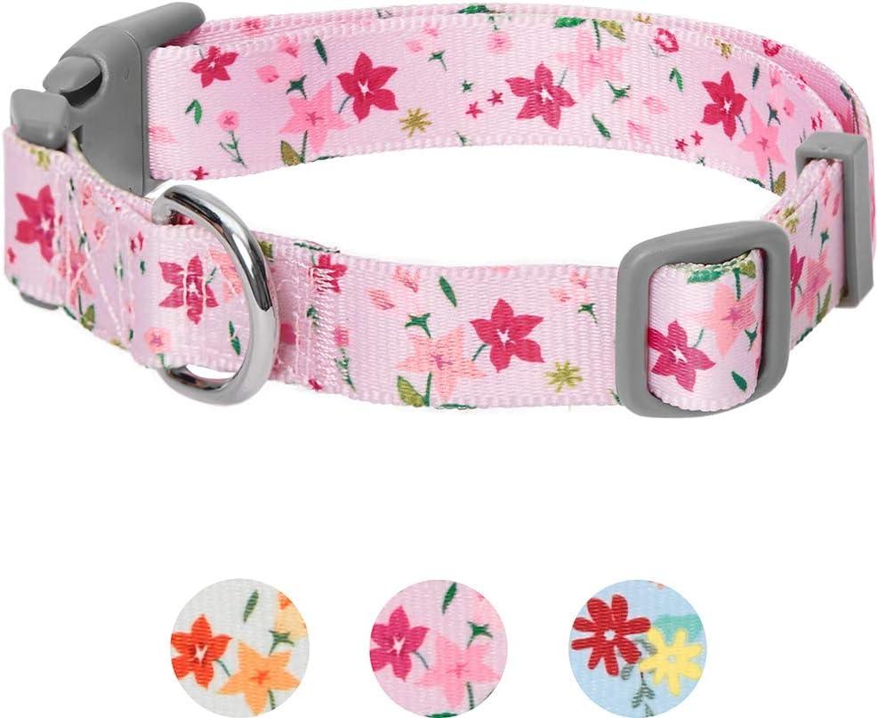 Umi. by Amazon - Made Well - Collar para perros con estampado de flores M, cuello 37-50 cm, collares ajustables para perros (rosa)