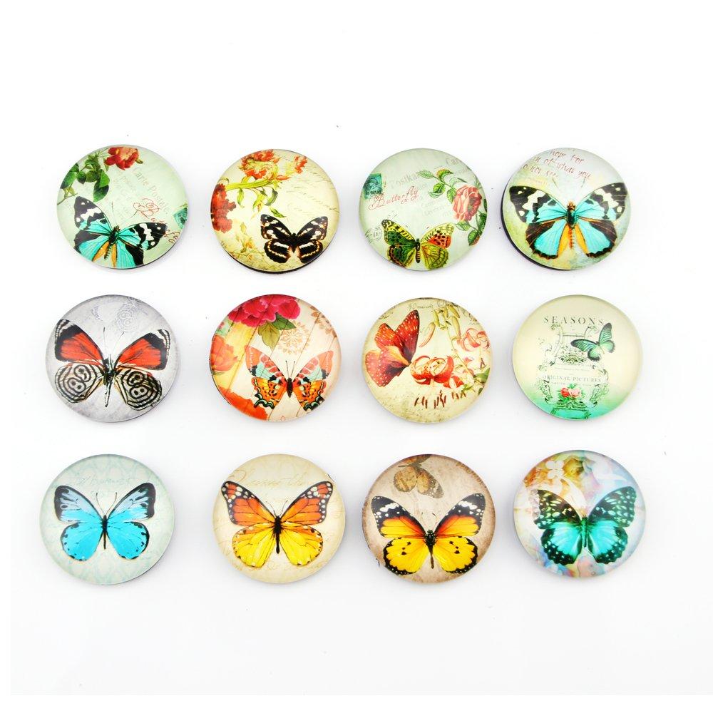 12 Pack Butterfly Pattern Fridge Magnets Set,Perfect Refrigerator Magnets,Office Magnets, Calendar Magnet, Whiteboard Magnets, 1.38 Diameter