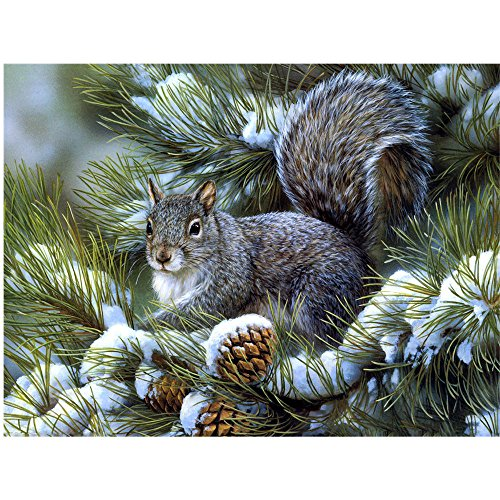 Arts Rakkiss 5D DIY Cedar Squirrel Natural Embroidery Square Diamond Drawing Round Drill Home Decor Gift 3038cm