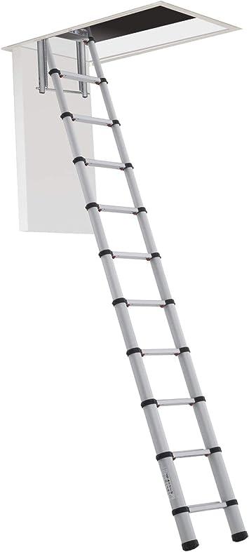 Zarges zartelemas38 3,8 m escalera telescópica de Telemaster – Plata, plateado, ZARTELOFT288: Amazon.es: Bricolaje y herramientas