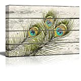 Wall26 - Colorful Peacock Feathers Artwork - Rustic Canvas Wall Art Home Decor - 32x48 inches