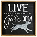 Malden International Designs 20079-01 Live Like Someone Left The Gate Open, 12x12, Black