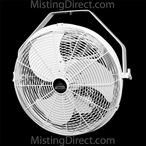 Misting Direct White 18 Inch Indoor Outdoor Wall Ceiling