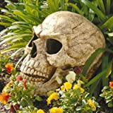 Design Toscano Sinister Simon Giant Skull Sculpture