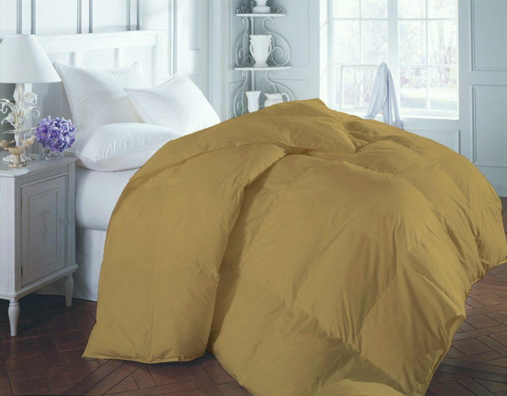 COMFORTER Luxurious 400 Thread Count 100 % Egyptian Cotton Superior Percale All Season Down Comforter Duvet Gold King By BED ALTER Solid (300 GSM Microfibre filling) by Bed Alter