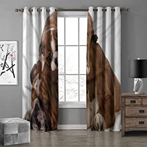 RenteriaDecor English Bulldog Rustic Curtains Father and Son Thermal Insulated Grommet Curtains for Bedroom W108 X L96 Inch