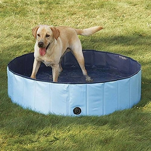 Dog Bathtub, PYRUS 47.3 x 11.8 Inches Collapsible Pet Bath Pools Large Inflatable Dog Bathtub Foldable Dog Pet Pool Bathing Tub for Dogs or Cats (L) by PYRUS (Image #1)