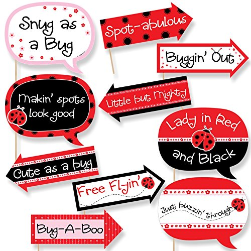 (Funny Modern Ladybug - Baby Shower or Birthday Party Photo Booth Props Kit - 10 Piece)