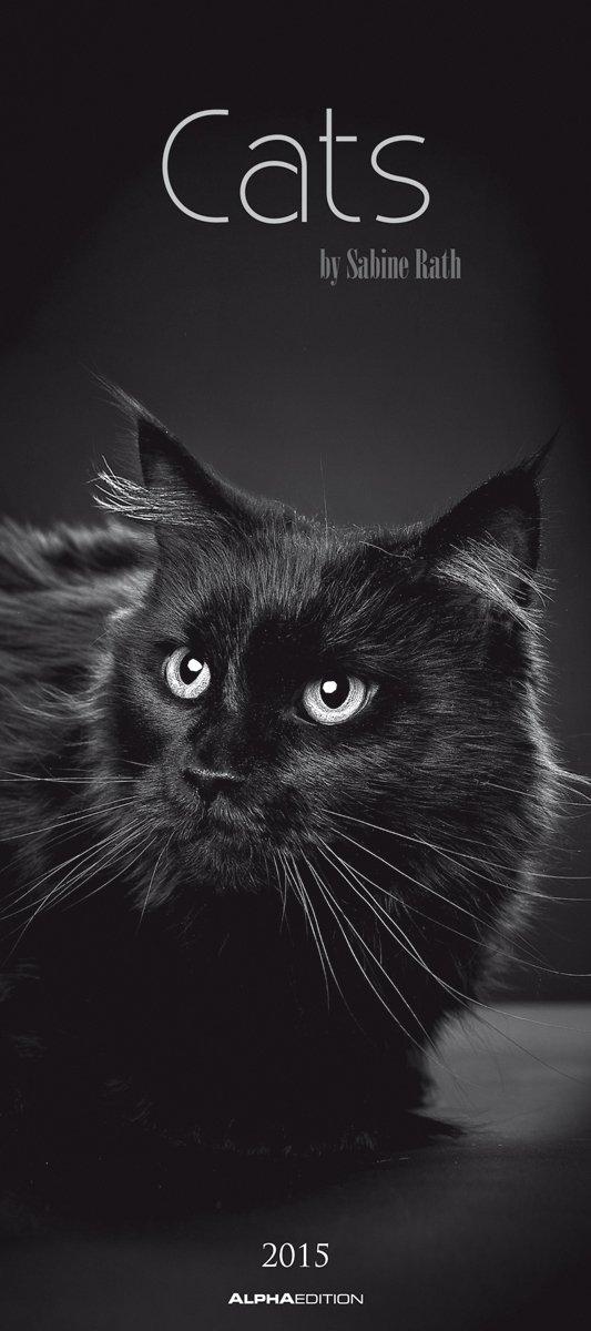 cats-2015-katzen-bildkalender-22-x-49-5-schwarz-weiss-by-sabine-rath