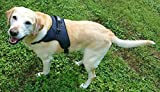 Dog Harness -New 2017- No Pull Reflective Big Dog Harness with Handle for Large Breed Freedom Walking Training Adjustable No-Choke Premium Quality with Security Safety Clip (XL)